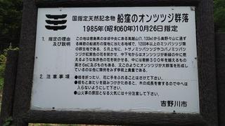 DSC_7908.JPG